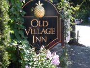 Old Village Inn, The